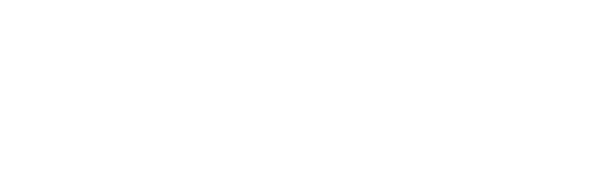 American Retirement Institute
